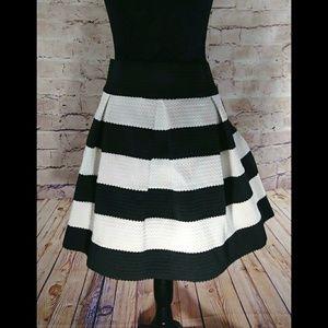 Blk and White Stripe A Line Skirt~Sz LG~NWT!